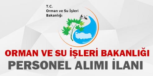 Orman Su İşleri Bakanlığı Sözleşmeli Bilişim Personeli Alımı