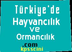 Coğrafya Türkiye'de Hayvancılık ve Ormancılık Testi Çöz 3